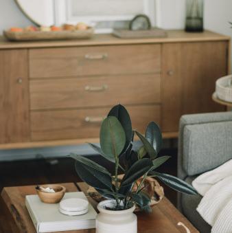 7 Ide Ramah Anggaran Untuk Memberikan Kehidupan Baru di Rumah Anda